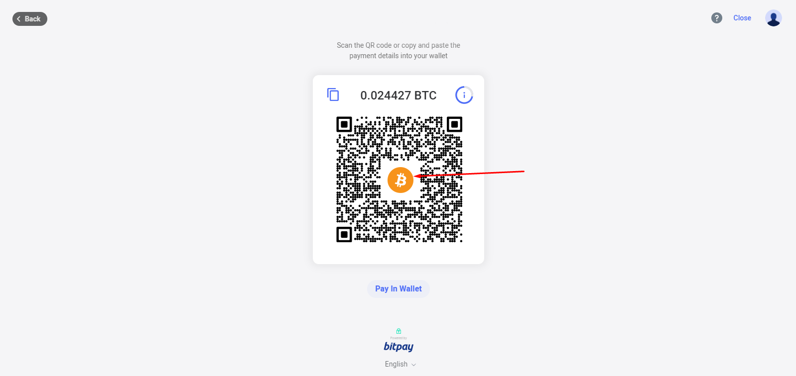 Kameleo-Pay-With-Bitcoin-Address-6.png